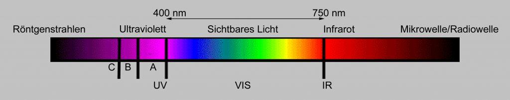 Abb 2 Elektromagnetisches Spektrum des Lichts. Für das menschliche Auge ist der Bereich zwischen 400 und 750 nm (Nanometer) sichtbar. Ultraviolette Strahlen dagegen sind unsichtbar und liegen zwischen 100 und 400 nm (Graphik: M. Pracher)